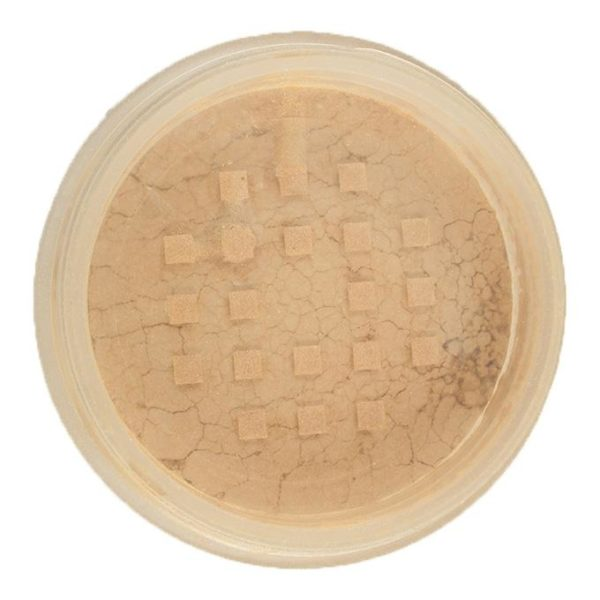 Sophia Asley Face & Body Bronzer - 2   Guerlain Natural