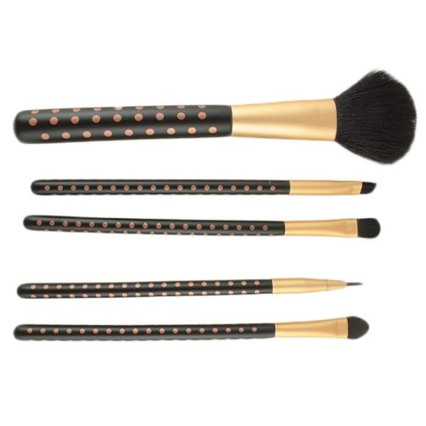 Sophia Asley Professional 5 Pieces Brush Set