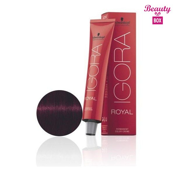 4-99-chatain-violet-rouge-60-ml (1)