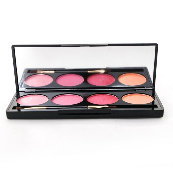 Pro Blusher 4in1 Palette No 1