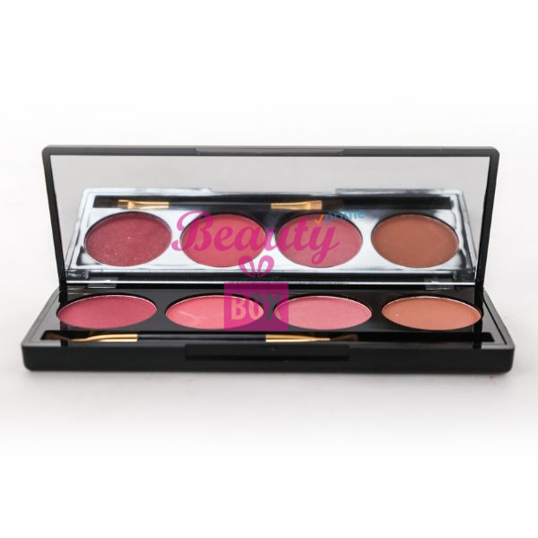 Pro Blusher 4in1 Palette No 4