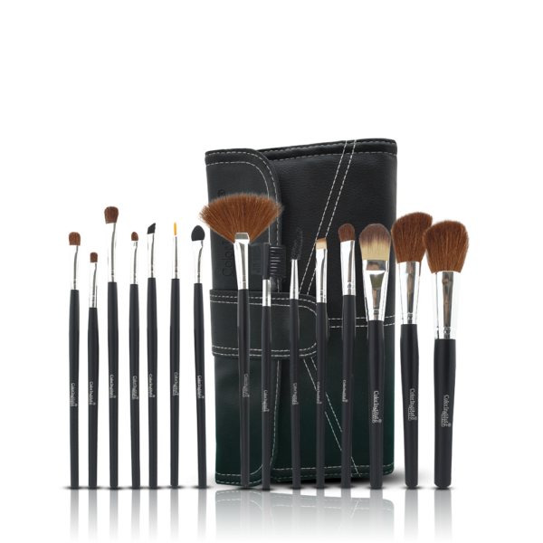Color Institute 15 Piece Leather Brushset