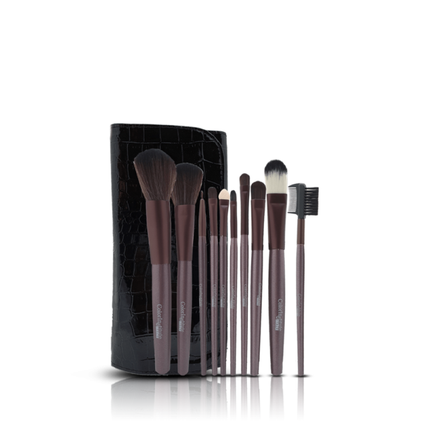 Color Institute 10 Piece Leather Brushset
